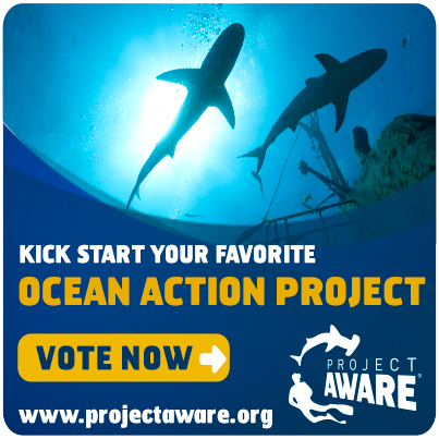 Ocean Action Project Vote Banner