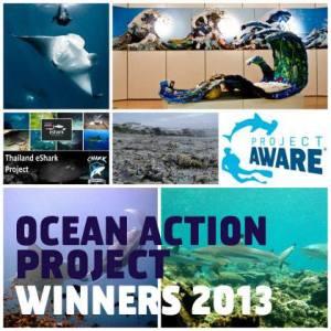 Ocean Action Project Winners 2013